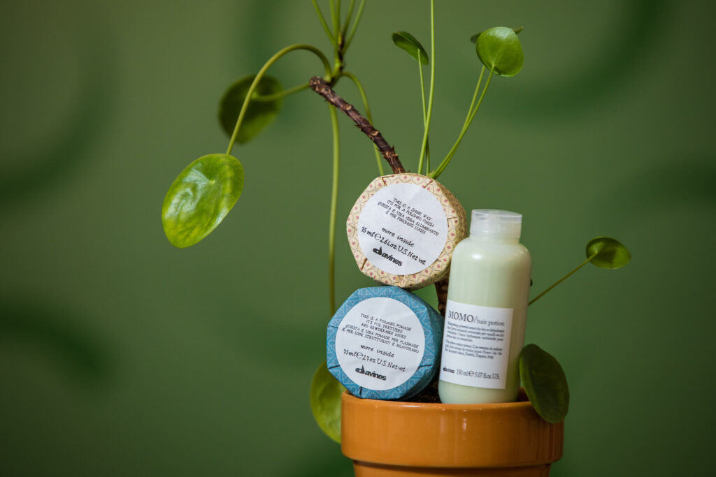 the-attractivators-davines-plant1